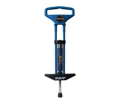 Blue Pogo Stick winning bidder