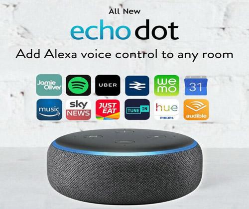 Smart Speaker with Alexa winning bidder