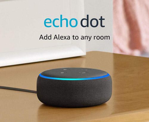 Echo Dot Smart Speaker winning bidder