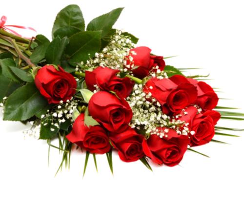 Dozen Red Roses winning bidder